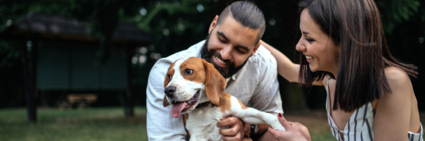 A Profile of Pet Owners: What Every Pet Insurer Should Know
